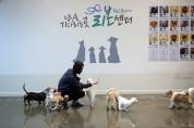 강동구, 2019 동물복지대상 공공부문에 행정안전부장관상 수상