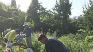 강동구, 도시농업 전문가 과정 운영